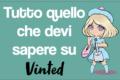 Tutto quello che devi sapere su Vinted.